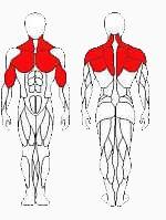 Vadzaari 1201 Блок для мышц спины - верхняя тяга