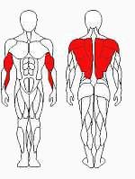 Vadzaari 1202 Блок для мышц спины - нижняя тяга